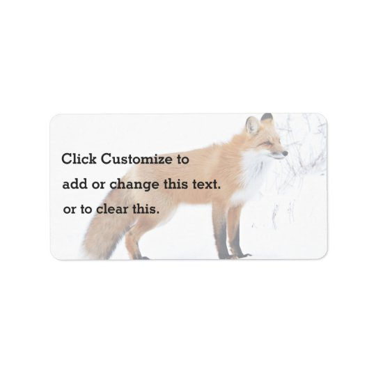 Squinting Fox Standing In Snow Address Label