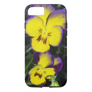 Squinting Pansy iPhone 7 Case