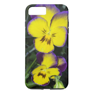 Squinting Pansy iPhone 7 Plus Case