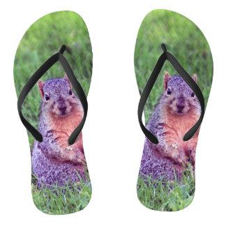 Squirrel 6705 flip flops