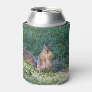 Squirrel 95 can cooler