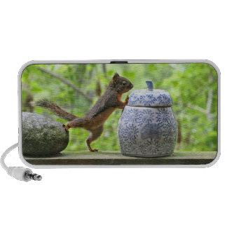 Squirrel and Cookie Jar Notebook Speaker