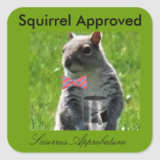 Squirrel Approved Stickers