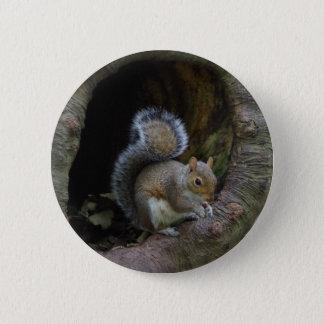 Squirrel Badge