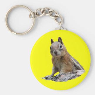Squirrel Basic Round Button Key Ring