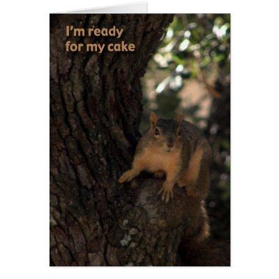 Funny Squirrel Birthday Card Zazzle