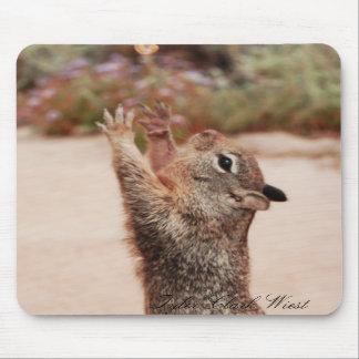 Squirrel catch 2 mousepad
