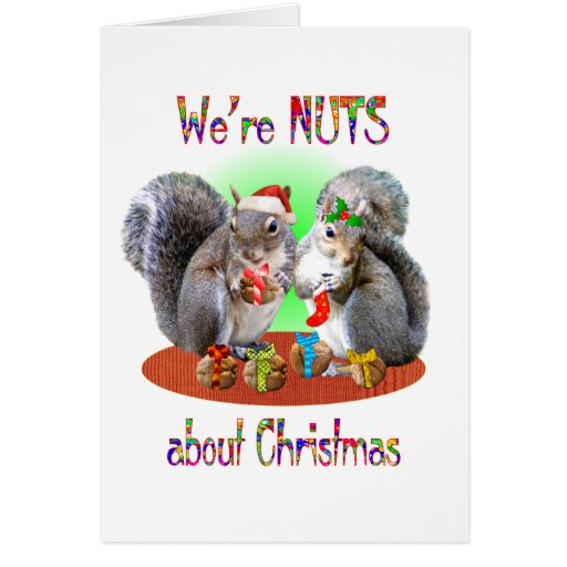Squirrel Christmas Nuts Cards