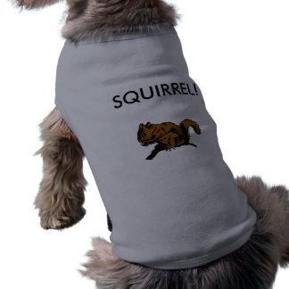SQUIRREL DOG SHIRT
