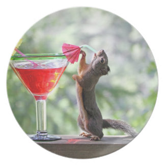 Squirrel Drinking a Cocktail at Happy Hour Plate