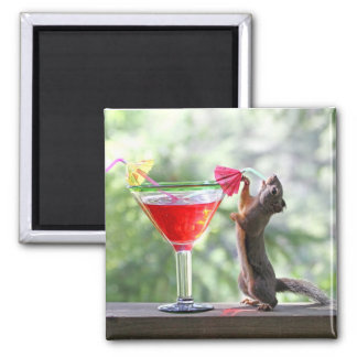 Squirrel Drinking a Cocktail at Happy Hour Square Magnet