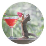 Squirrel Drinking a Cocktail Party Plate