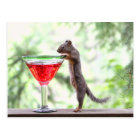 Squirrel Drinking a Cocktail Postcard