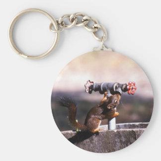 Squirrel drinking key ring