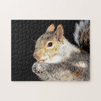 Squirrel eating a nut jigsaw puzzle