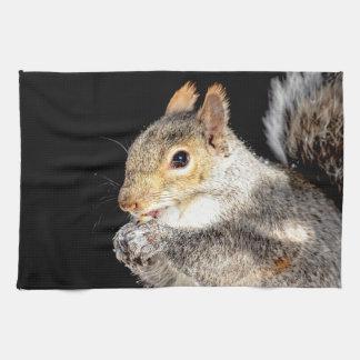 Squirrel eating a nut tea towel