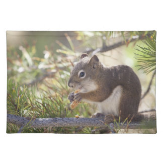 Squirrel eating a pine cone 2 placemat