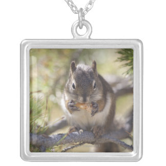 Squirrel eating a pine cone silver plated necklace