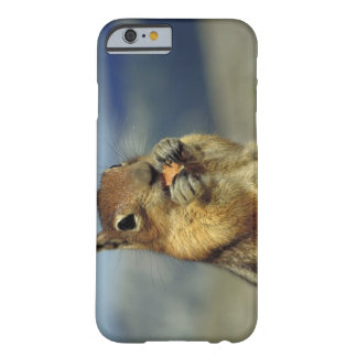 Squirrel eating barely there iPhone 6 case