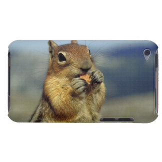 Squirrel eating Case-Mate iPod touch case