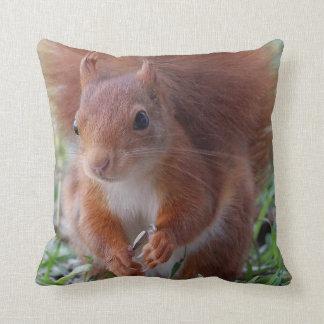 Squirrel ~ Écureuil ~ squirrels ~ by JL GLINEUR Cushion