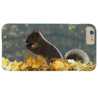 Squirrel Feeding Barely There iPhone 6 Plus Case