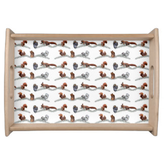Squirrel Frenzy Tray (choose colour)