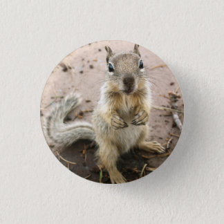 squirrel - Grand Canyon Photograph 3 Cm Round Badge