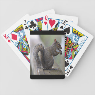 Squirrel (Grey) Bicycle Playing Cards
