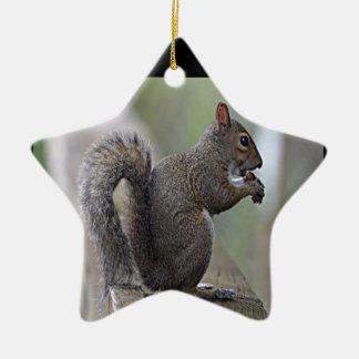 Squirrel Grey Ornaments
