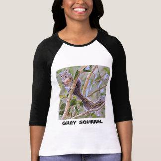 Squirrel Grey (Kentucky and North Carolina) T-Shirt