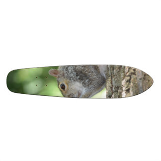 Squirrel Hanging Out Custom Skateboard
