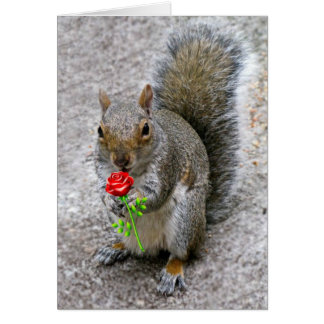 Squirrel Holding a Red Rose Valentine's Card
