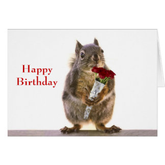 Squirrel Holding Red Rose Bouquet Greeting Cards