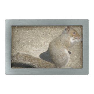 Squirrel Hungry Horatio Belt Buckle