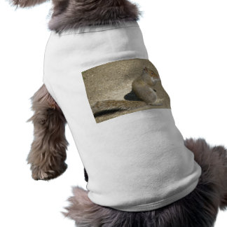 Squirrel Hungry Horatio Dog T Shirt