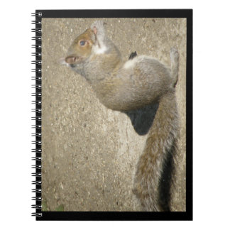 Squirrel Hungry Horatio Notebook