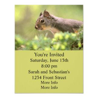 Squirrel in a Tree 4.25x5.5 Paper Invitation Card