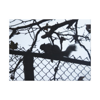 SQUIRREL IN BLACK wrapped canvas print