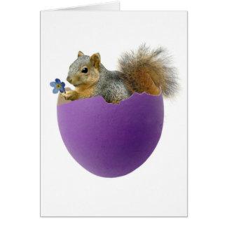 Squirrel in Eggshell Card