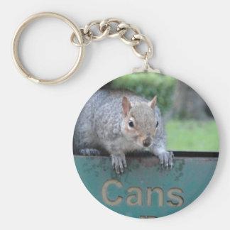 Squirrel in litter bin key ring
