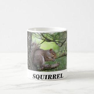 SQUIRREL IN PINE TREE EATING NUT COFFEE MUG