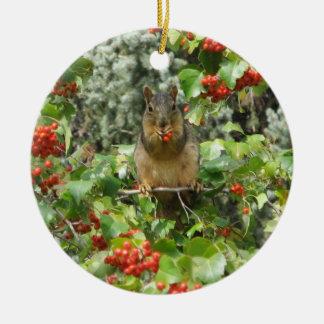 Squirrel in Rowan Round Ceramic Decoration