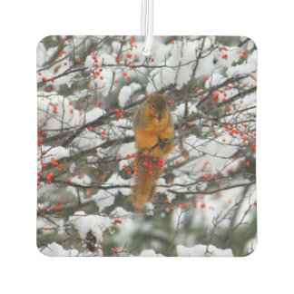 Squirrel in the Snow 6232 Car Air Freshener
