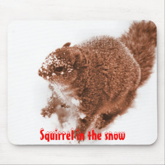Squirrel in the snow Mousepad