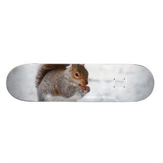 Squirrel in the Winter Skate Board Deck