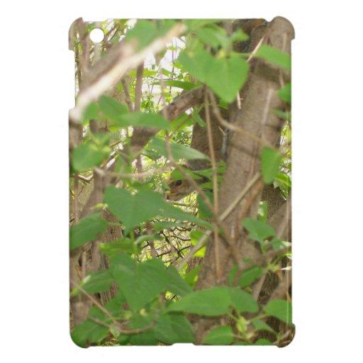 Squirrel in Tree Case For The iPad Mini