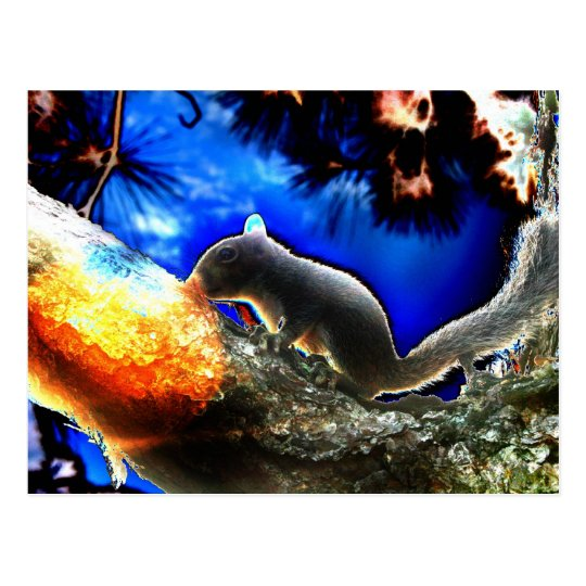 Squirrel In tree Pop Art Style Postcard