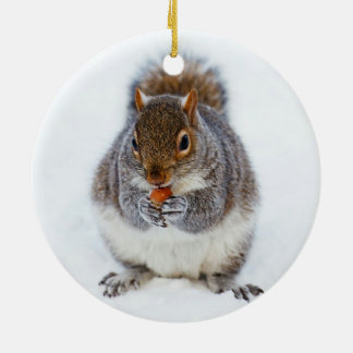 Squirrel in Winter Christmas Ornament