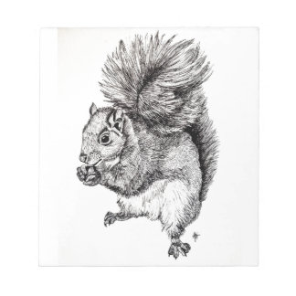Squirrel Ink Illustration on Notepad